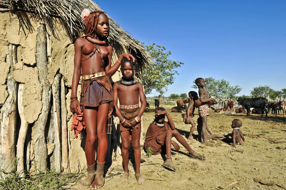 Namibia: Safari Dream