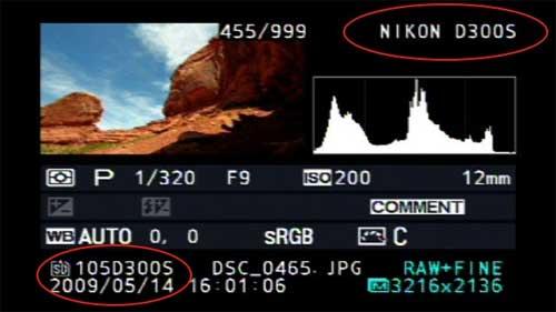 hastighet dating kanon eller Nikon