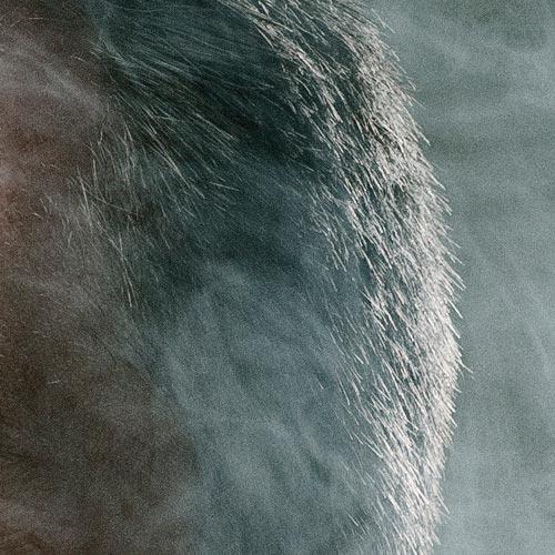 detaljbild-ringblixt-rökmaskin-studioporträtt