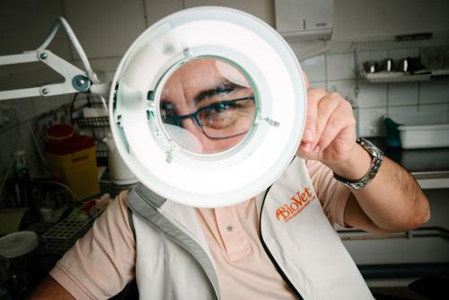 portratt-forstoringsglas-belysning-ring-labb