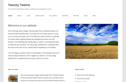 twenty-twelve-wordpress3-5
