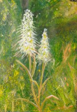 Lizard Orchids - acrylic painting on paper