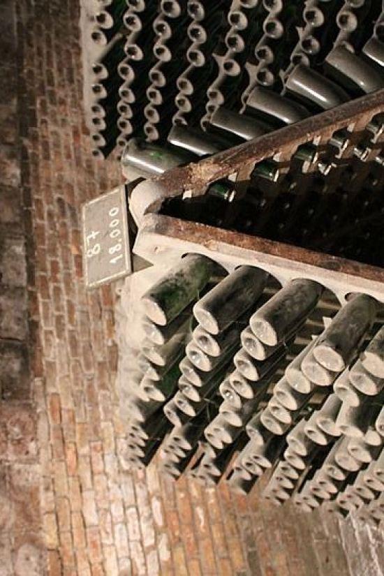 Depozit de sticle vechi din Barcelona