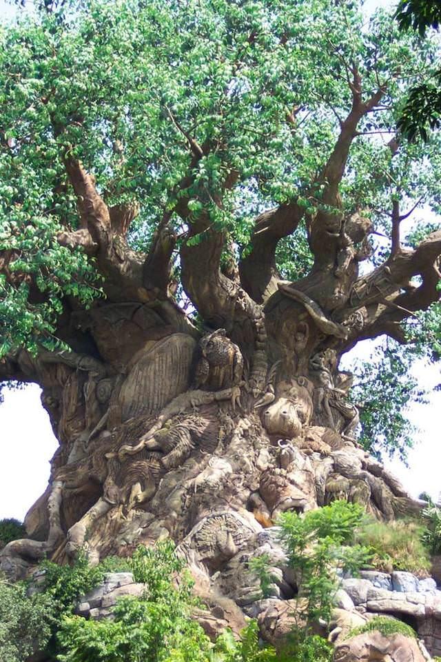 copac indian