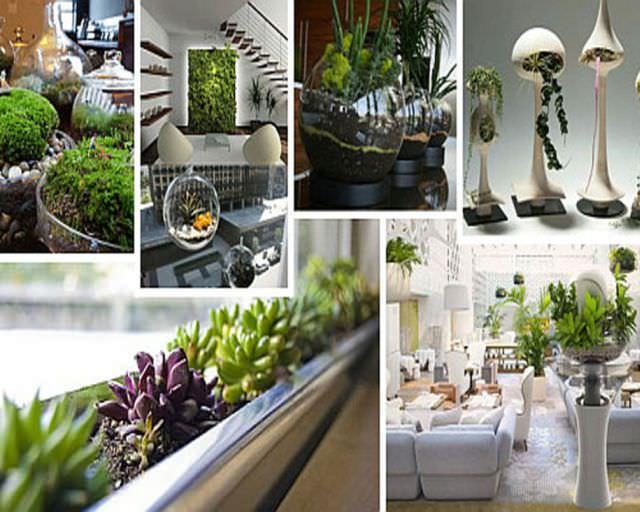 gradina de apartament grădini interioare