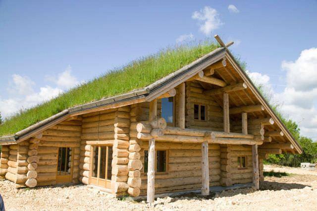 cabane de busteni