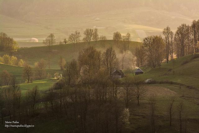 fotografii de Marius Podină de la tara