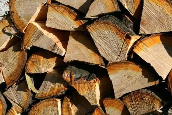 lemne de foc verzi
