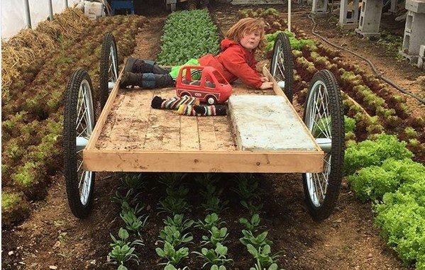 copii - la grădina