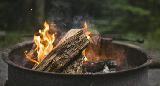 lemn de foc reducerea TVA