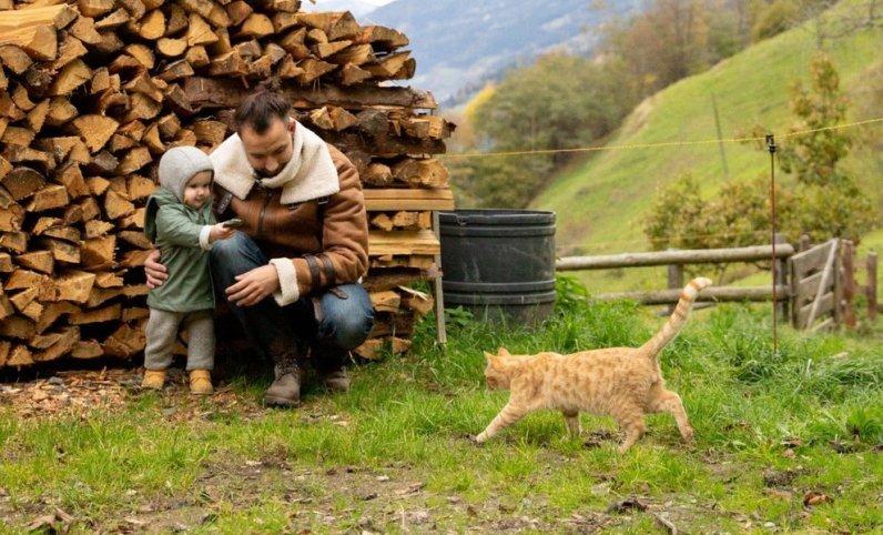 mutarea la țară - copil si pisica