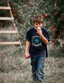 mutarea la țară - mananca mere