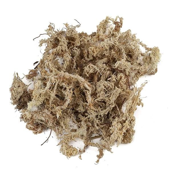 Veenmos sphagnum moss kopen bestellen