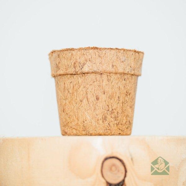 kokos cocopeat eco bloempot sierpot kopen