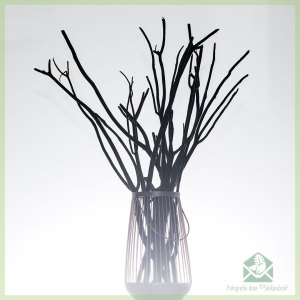 Mitsumata decoratie takken 10 stk Black Velvet 60 cm