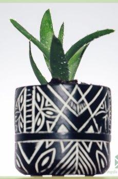 Anubis white plantenpot bloempot sierpot 6 cm