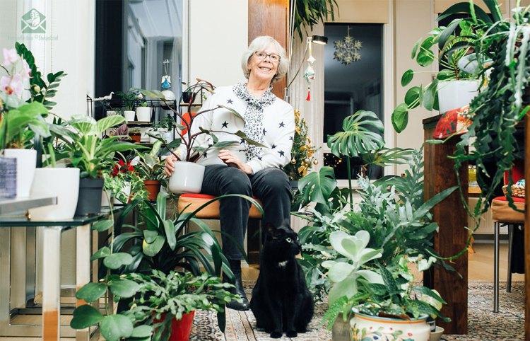 Interview van plantenliefhebber in australie naar plantenverzamelaar in Nederland