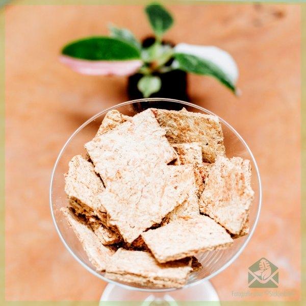 Sphagnum mos spagnum moss biscuitjes kopen en stekken in sphagnum