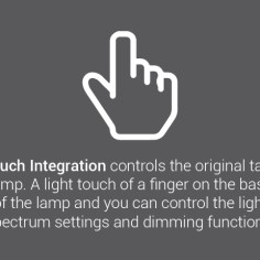 Touch-Integration