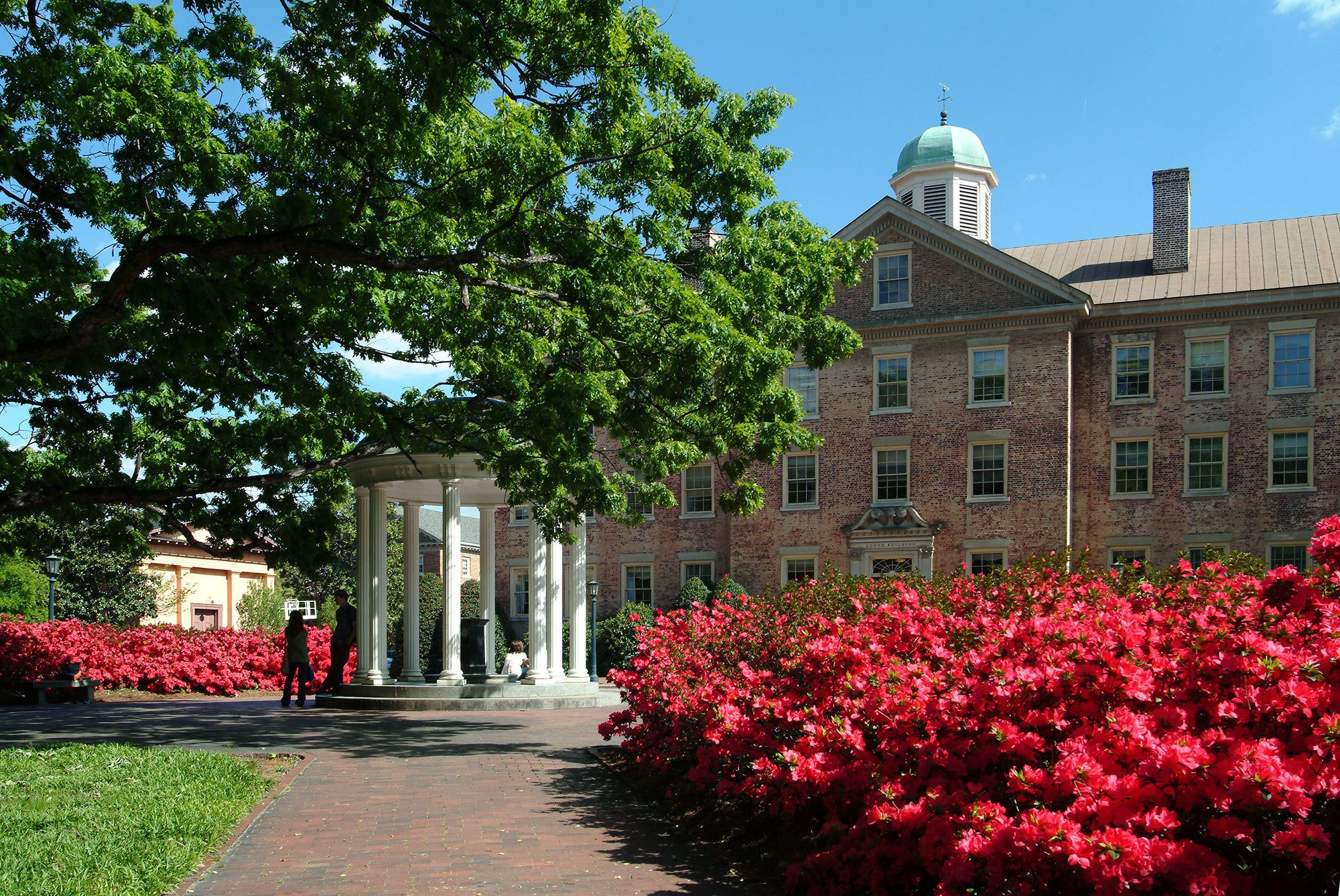 8 Colleges With The Best Pre Med Programs