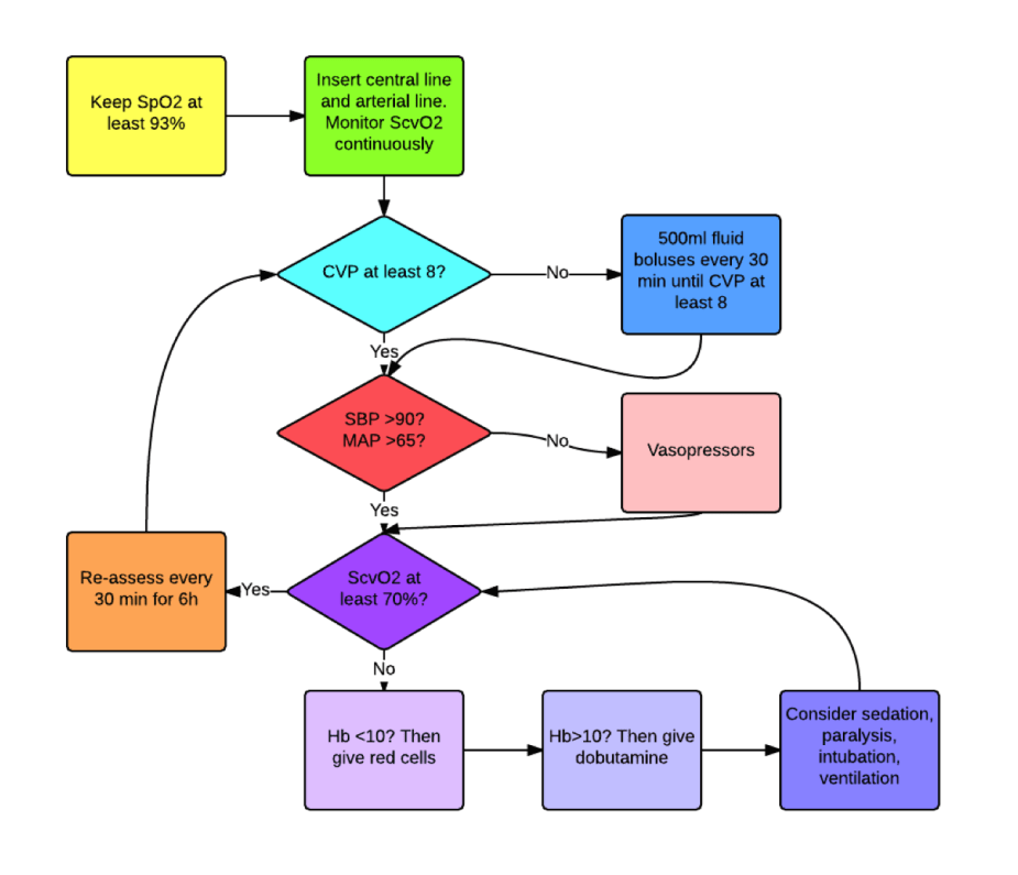 ProMISe flow diagram