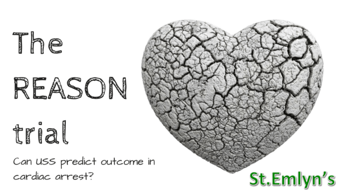 the-reason-trial