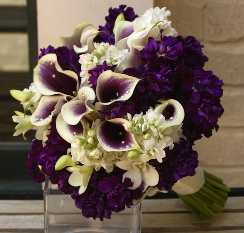 Eggplant Calla and White Orchid Bouquet