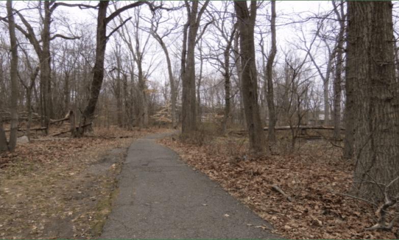 AWR Path