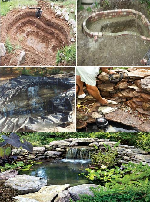 Building Garden Koi Pond
