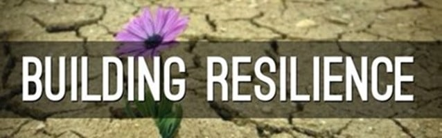small flower growing though cracking mud representing resilience
