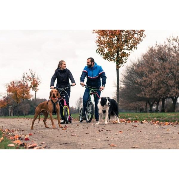 Yedoo Dog-adapter 25.4 voor Mezeq, Mula, City en Friday