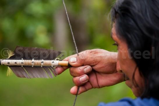 Etonnante technique de prise de corde , ou Kulawa, avec la pince pour l'embout, les majeurs et annulaire crochetés, et la 3eme phalange distale de l'auriculaire en appui. Les wayampi fabriquent toujours des arcs traditionnels mais les utilisent rarement pour la pêche à l'arc.