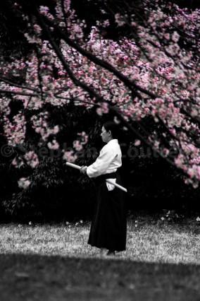 Sakura Aikido - Meiji Jingu - Tokyo