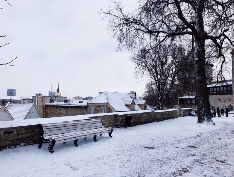 Best city views in Tallinn