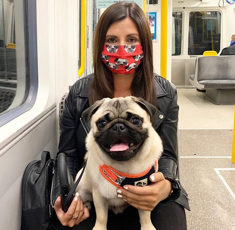Pug mask and pug on metro