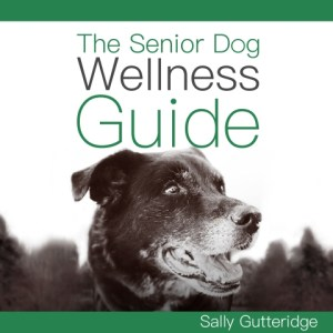 The Senior Dog Wellness Guide by Sally Gutteridge, Narrated by Stephanie Murphy