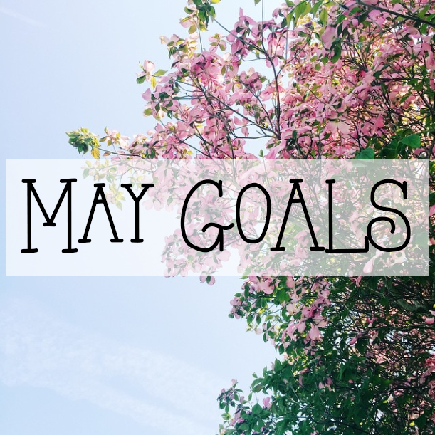May Goals // stephanieorefice.net