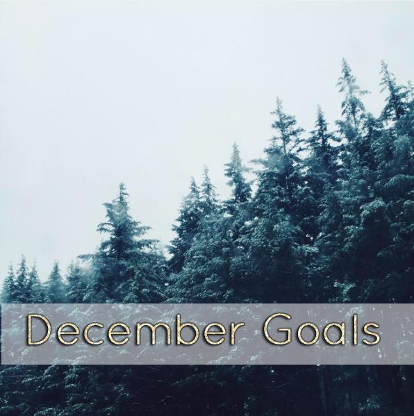 December Goals // stephanieorefice.net