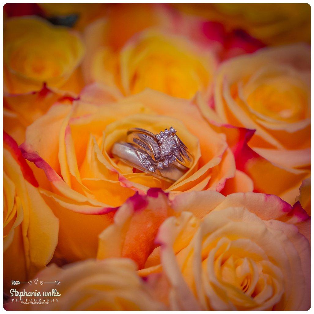 2016 02 11 0026 Indian wedding | Everett Court House & Silverlake Everett, Washington