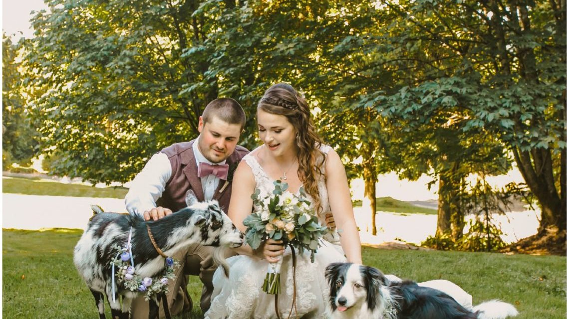 pets at your wedding lookout lodge photographer