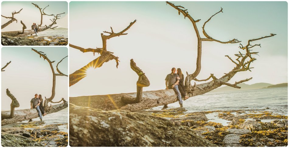 Stephanie Walls Photography 1132 950x487 Washington Park Anacortes Engagement with Richie and Kelsey