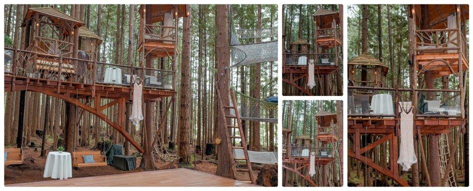2021 05 22 0053 950x384 The Emerald Forest Elopement | Alicia & Glen