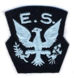 eagles patch