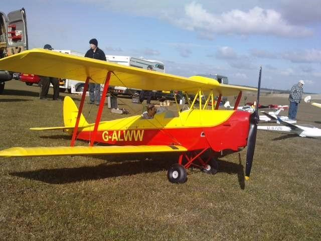 3rd scale tigermoth