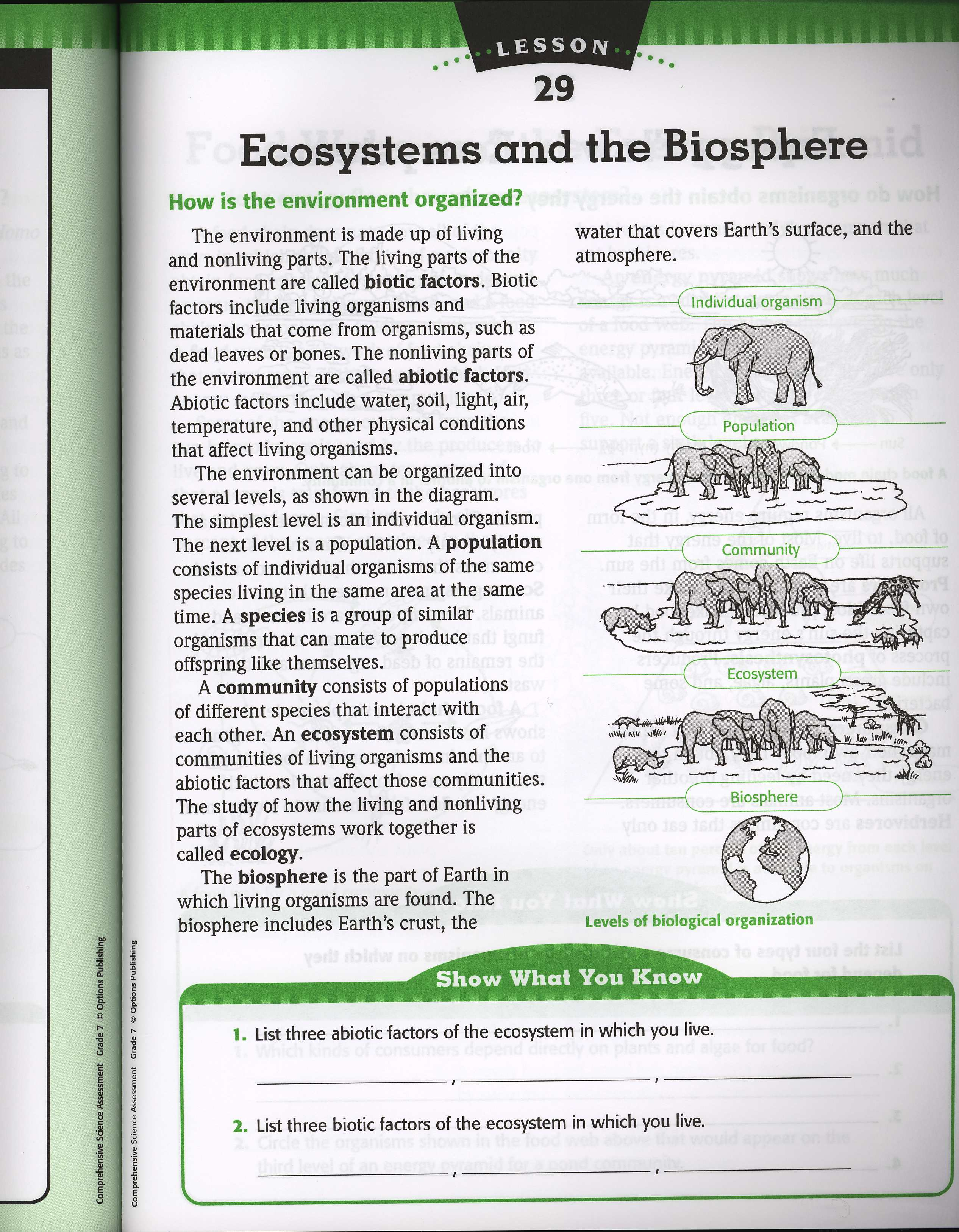 What Is Ecology Worksheet