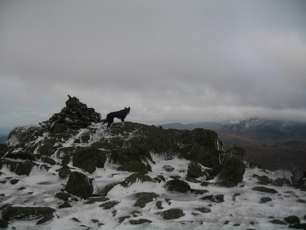 Grey Friar summit