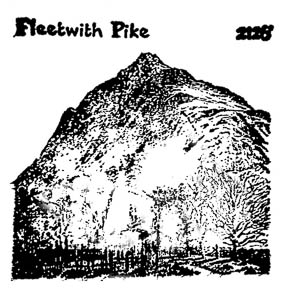 fleetwith-stamp