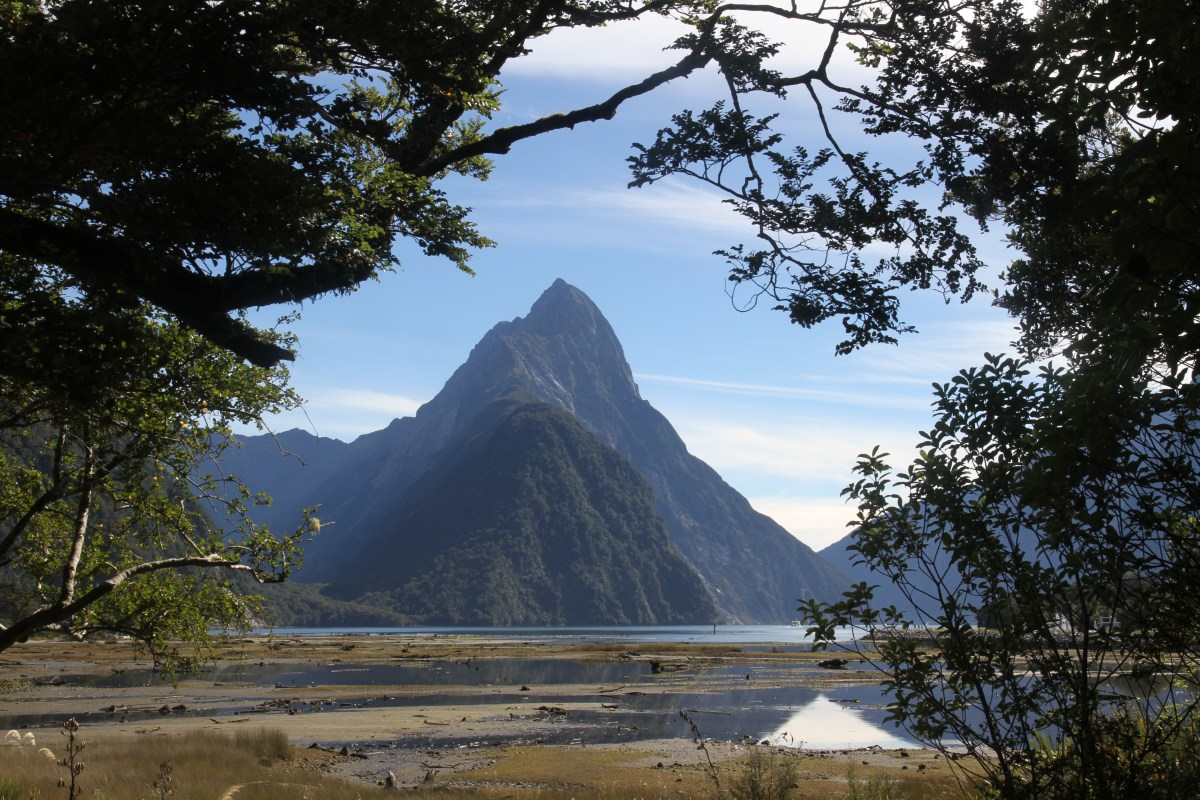On the tourist trail at Milford Sound
