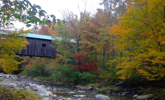Read more about the article Foliage Activities In and Around Stowe