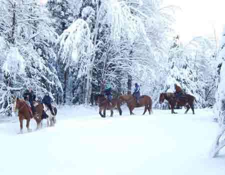 Horseback riding through the Vermont snow